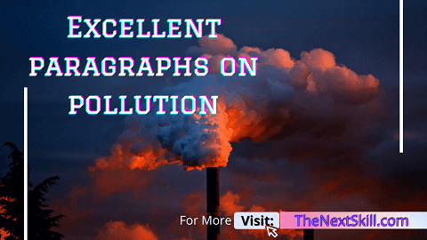 Paragraphs on pollution