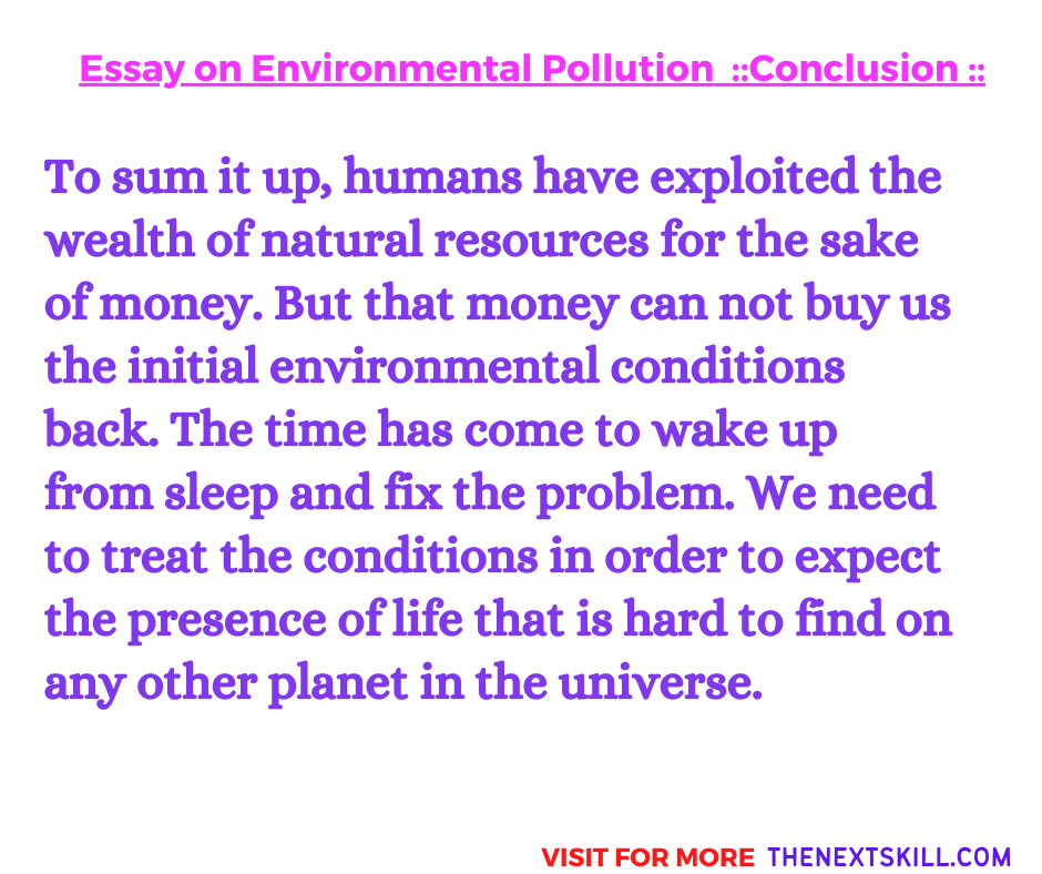 Essay on Environmental Pollution | Conclusion